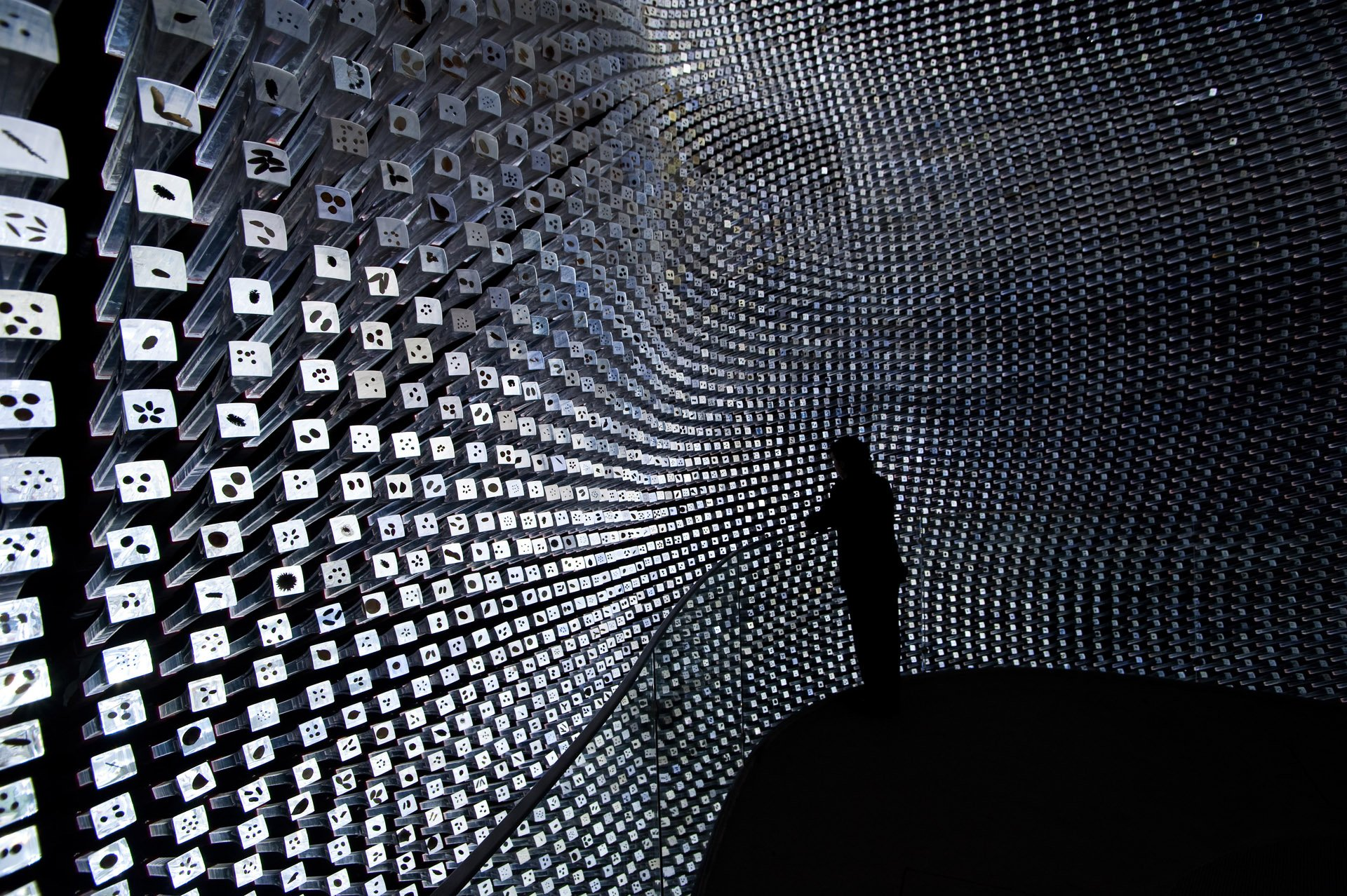 seed cathedral at expo 2010 shanghai china museum planner